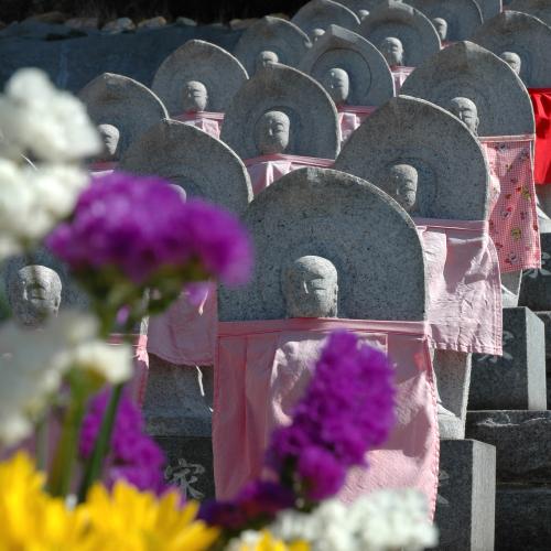 住吉霊園の冬